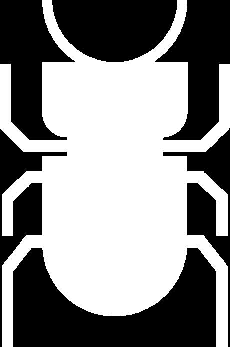 Besouro Escaravelho