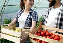 Conheça as vantagens e facilidades de ser um agricultor familiar