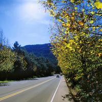 A beleza da estação do Outono em Gramado e suas, emoções e sensações...