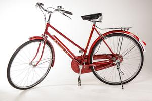 Bicicleta Feminina Phoenix Vintage
