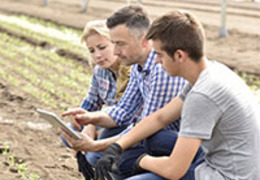 Capacitação de trabalhadores agrícolas: entenda como melhorar a produtividade