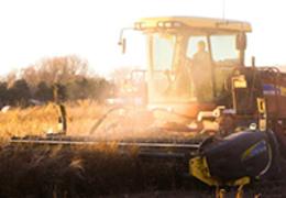 Crédito rural Cresol: alavanque o seu negócio com segurança