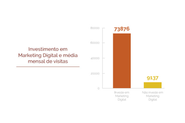 Investimento em Marketing Digital e média mensal de visitas