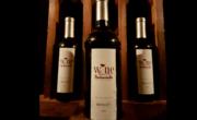 Pastasciutta Wine