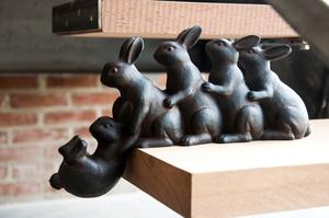 Cinco coelhos